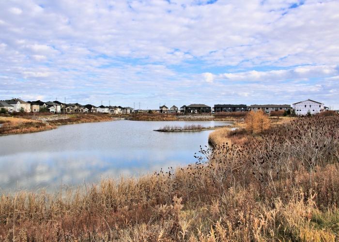 Blackstone south Water retention park