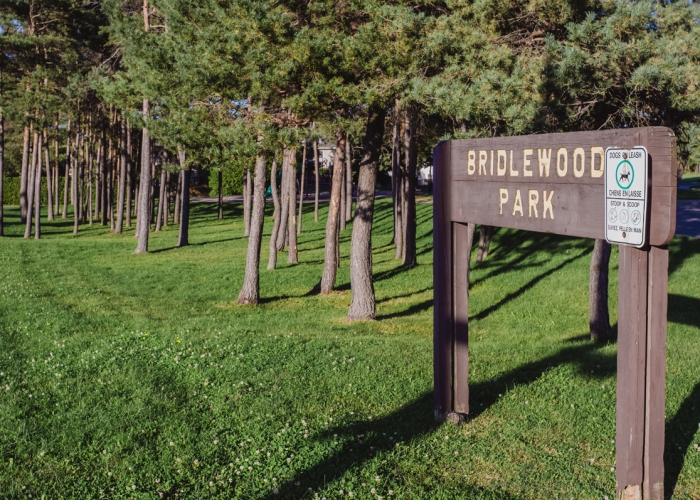 Bridlewood-Emerald-4