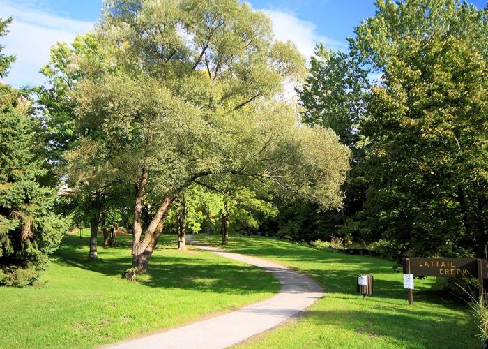 Katimavik-Cattail-Creek-Park-IMG_4519