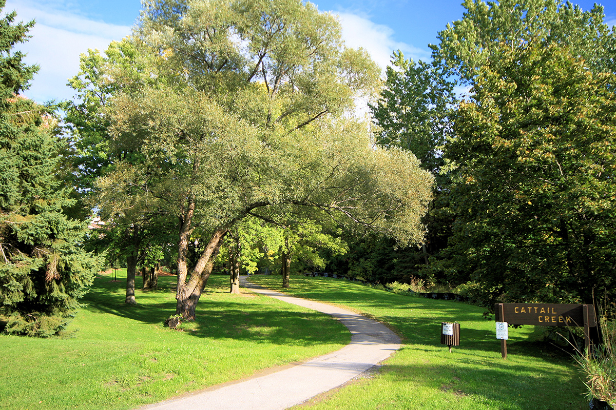 Katimavik-Cattail-Creek-Park-IMG_4519