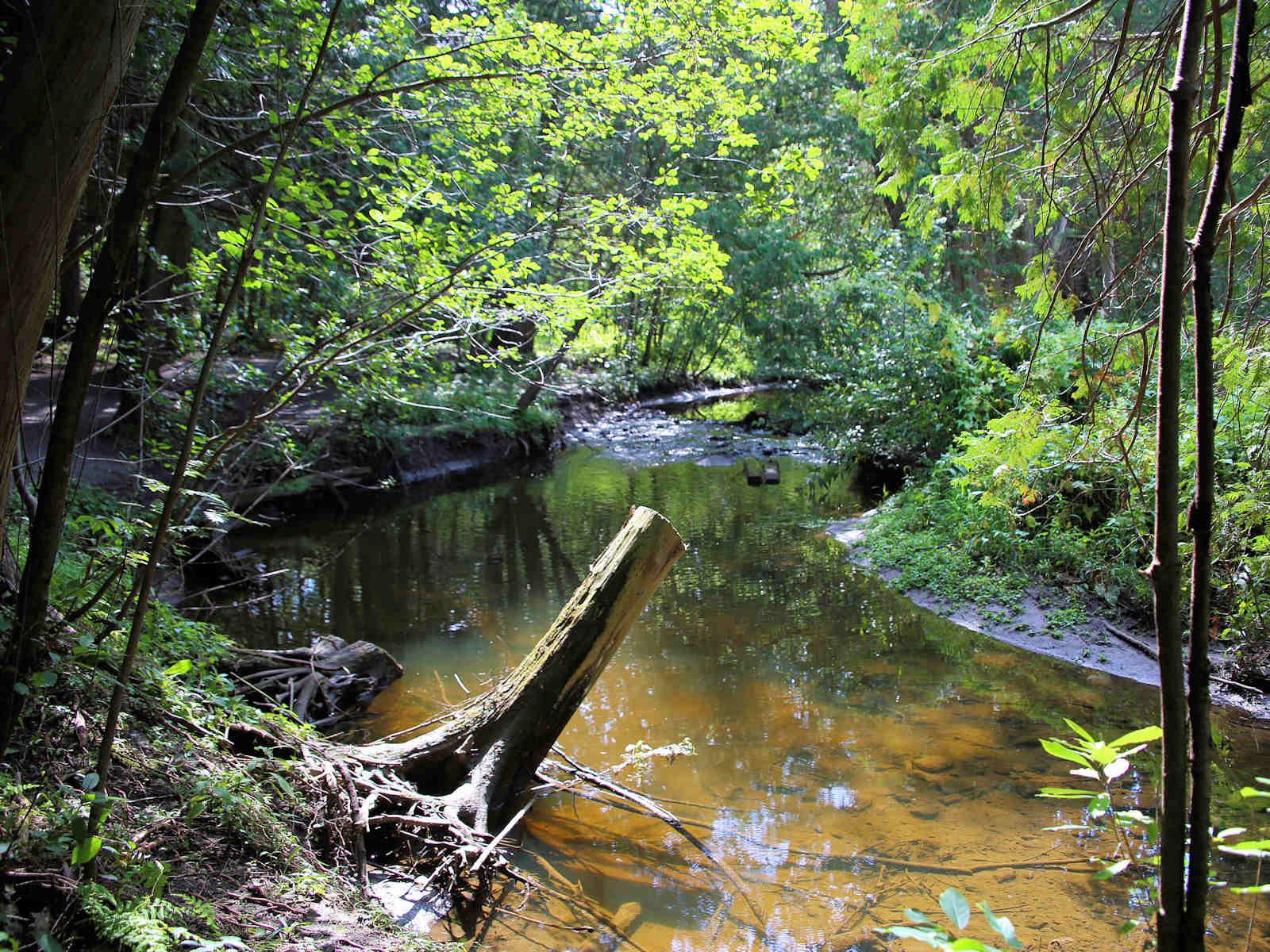 Stittsville Poole Creek
